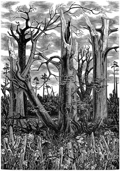 """""""Spring after the Hurricane"""" or Spring 1988"""" by Monica Poole  This engraving was made for the publication of 5 commissioned engravings (by 5 different wood engravers), the sales of to aid storm disaster of the United Kingdom's """"The Great Storm of October 1987"""". This aid effort was organized through the Society of Wood Engravers  The National Trust Foundation for Art."""