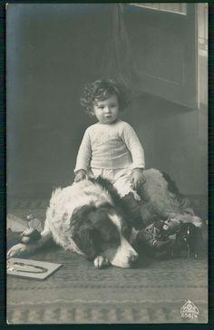 Baby Child ride big huge Saint Bernard Dog original old c1910s photo postcard