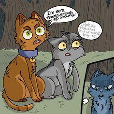 Warrior cats tumblr | Warriors Cats Firestar And Bluestar Bluestar tumblr