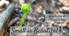 Flowers of Quiet Happiness:  | :: Small is Beautiful ::