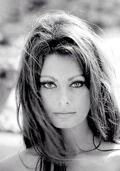 Sophia Loren, just beautiful