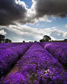 Landscape Photography by Peter Spencer | Cuded