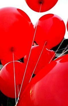 The ten ted balloons haunted her dreams, while the boy in the rabbit mask haunted her consciousness.