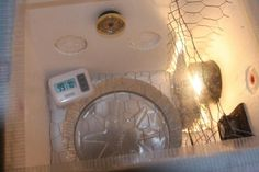 This site gives a great description for how to build a styrofoam ice chest incubator. Styrofoam Crafts, Homestead Farm, Recycled Materials, Farming, Making Out, Homesteading, Projects To Try, Recycling, Ice
