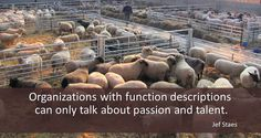 Organizations with function descriptions can only talk about passion and talent.