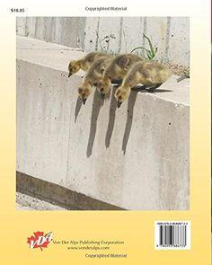 Die Kunst der Natur (German Edition): Klaus D. Emrich: 9780993686733: Amazon.com: Books Book Cover: © photo by Klaus D. Emrich - courtesy of Von Der Alps Publishing Corporation CANADA #KlausDEmrich #ElyssePoetis #VonDerAlpsPublishingCorporation #CANADA #Amazon #AmazonBooks #Books #Authors #Poets #Poetry #Stories  #Photographers #Artists Cover, Photos, Animals, Art, Nature, Pictures, Animales, Animaux, Blankets