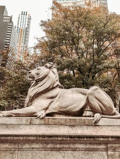 The New York Public Library: A Photo Diary Photo Diary, New York Public Library, Blog, Blogging