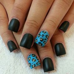 Nice black n cheetah blue