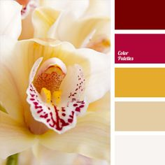 Consists of a harmonious combination of soft mustard yellows and crimson red. Blotches of wine and burgundy hues enliven the impression made by the composition. This style is well-suited for basements and ground facilities, as yellow and honey shades will compensate the lack of sunlight in them.