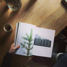 ++ photograph by: elisabeth dunker / fine little day