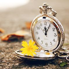 Beauty and time are both so fleeting... vintage pocket watch