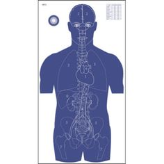 Lockhart Tactical | Military and Law enforcement tactical gear and equipment - Law Enforcement Vital Anatomy Target