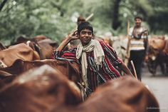 A smiling boy with cattle herd in Punjab, India. If you would like to buy a print of any of the images, get in touch with me here.