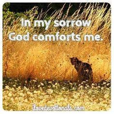 God comforts me in my sorrow   https://www.facebook.com/wendyVeyck/photos/943075209042254