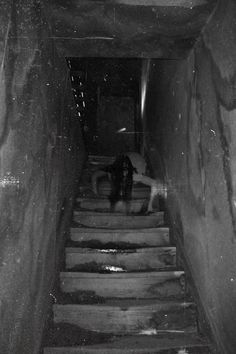 crawling down the stairs