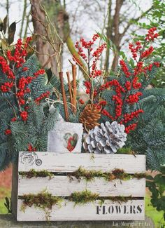 Christmas flowers box