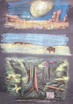Geography Theme Study: Biomes chalk art