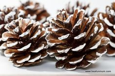 christmas pine cone crafts | Painted Pine Cone
