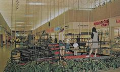 Vintage Postcard Photo 1960s SHOPPING MALL Horseheads NEW YORK