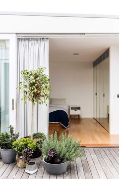 An Old Tea Factory Renovation: Surry Hills Apartment by Josephine Hurley Architecture Warehouse Apartment, Converted Warehouse, Interior Architecture, Interior Design, Surry Hills, Old Bricks, Arched Windows, Brick Building, Apartment Design