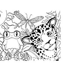 rainforest color pictures | Rainforest (Amazon) Coloring Page ...