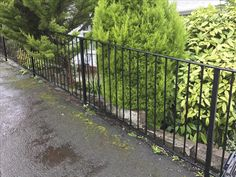 Garden Fencing, Fence, Bristol, Sidewalk, Building, Garden Fences, Side Walkway, Buildings, Sidewalks