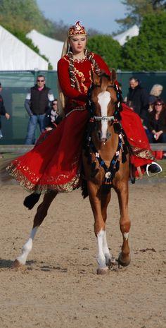 Sheer Elegance - a Karabagh horse at the Royal Windsor Horse Show