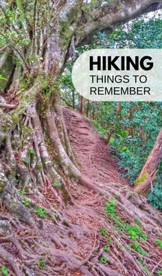 Hiking tips for beginners. Day hikes at national parks and local hikes. Whether it's mountains or easier hiking trails, be prepared! Hiking gear, your outfit, shoes, water, food, snacks, nature with forests and waterfalls, and hiking in hot weather! Items to put on your hiking packing list for your backpack that includes essential hiking gear. Find lots of hiking trails that are outdoor travel destinations and when you're on a road trip on a budget during summer vacation adventures!