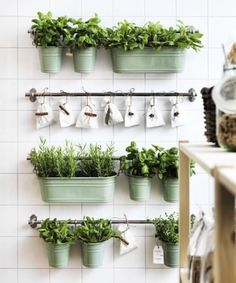 Indoor Herb Gardens 15 phenomenal indoor herb gardens metal tins towels and metals keep herbs and spices close at hand with the fintorp kitchen organizer series from ikea workwithnaturefo