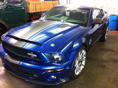 2008 Mustang Cobra