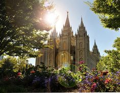 I think this picture is absolutely Beautiful. Love the Salt Lake City Temple