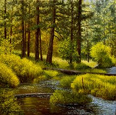 Mel McRobert - Small Creek- Oil - Painting entry - June 2017 | BoldBrush Painting Competition