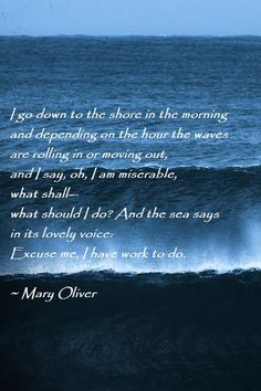 I Go Down To The Shore~ I go down to the shore in the morning and depending on the hour the waves are rolling in or moving out, and I say, oh, I am miserable, what shall- what should I do? And the sea says in its lovely voice: Excuse me, I have work to do. -Mary Oliver