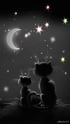 Find GIFs with the latest and newest hashtags! Search, discover and share your favorite Good Night Animation GIFs. The best GIFs are on GIPHY. Gif Animé, Animated Gif, Animated Screensavers, Good Night Sweet Dreams, Stars And Moon, Belle Photo, Crazy Cats, Cat Art, Urban Art