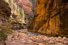 Epic Hikes of Zion - Angels Landing and The Narrows — Travel Is Beautiful Before Us, Grand Canyon, Hiking, Angel, Travel, Beautiful, Walks, Viajes, Destinations