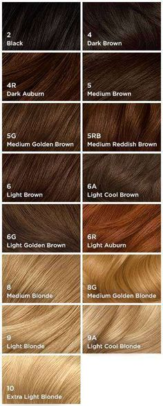 Hair Color Chart Clairol Natural Instincts L O C K S Pinterest