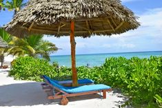 Welcome to Aya Beach Bungalows, located in Kizimkazi, the South coast of Zanzibar where the tourists can enjoy the white sand and tranquil atmosphere. Beach Bungalows, Beach Resorts, Bungalow Hotel, Dolphin Tours, Mangrove Forest, Best Cruise, Island Tour, Fishing Villages