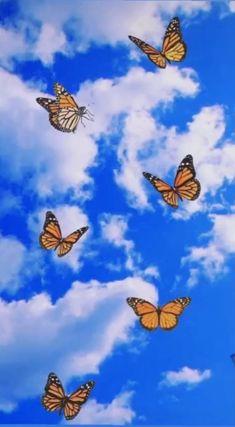 Cute Blue Wallpaper, Witchy Wallpaper, Butterfly Wallpaper Iphone, Cute Patterns Wallpaper, Trippy Wallpaper, Aesthetic Pastel Wallpaper, Iphone Background Wallpaper, Cartoon Wallpaper, Vintage Flowers Wallpaper