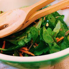 Basic Vinaigrette Salad Dressing, America's Test Kitchen Family Cookbook, pg. 85