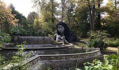 Atlanta Botanical Garden, Botanical Gardens