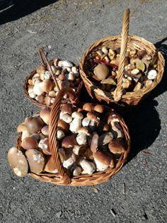 Stuffed Mushrooms, Vegetables, Food, Meal, Essen, Vegetable Recipes, Hoods, Meals, Stuff Mushrooms