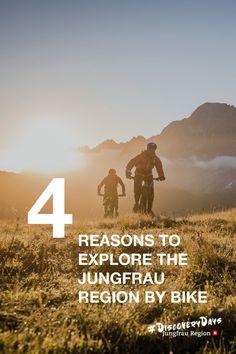 4 Reasons To Explore The Jungfrau Region By Bike 🚲‼️  #Bike #sun #summer #nature #mountains #switzerland #jungfrauregion #madeinbern #inLOVEwithSWITZERLAND #switzerland Better Half, Bike Trails, Plan Your Trip, The Locals, Mountain Biking, Scenery, Social Media, Tours, Explore