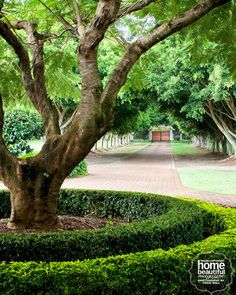 Do you have a large front page or backyard? Of course sometimes you feel tired and bored should be a bit more nature across the yard or garden at your home, rather than having to cross the ordinary… Best Beautiful Long Driveway Landscaping Design Ideas