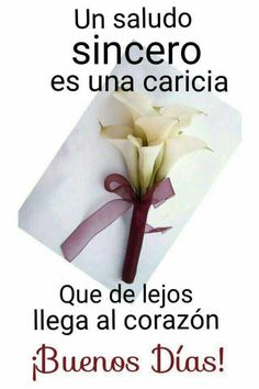 Mi amiga mi amiga good morning, spanish inspirational quotes y. Spanish Inspirational Quotes, Spanish Quotes, Morning Greetings Quotes, Morning Messages, Good Morning Good Night, Good Morning Quotes, Morning Thoughts, Ex Memes, Motivation Diet