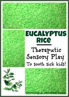 "Soothing Therapeutic Sensory Activity - eucalyptus sensory rice ("",)"