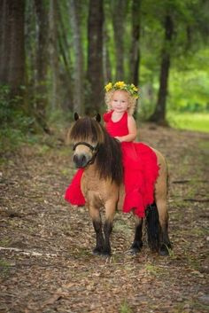 The most adorable photo of a little girl on a miniature horse. ❤ - Fabienne Claude - - The most adorable photo of a little girl on a miniature horse. ❤ The most adorable photo of a little girl on a miniature horse. Cute Horses, Pretty Horses, Horse Love, Beautiful Horses, Animals Beautiful, Mini Horses, Animals For Kids, Cute Baby Animals, Animals And Pets
