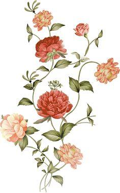 Botanical Flowers, Flowers Nature, Flower Art Images, Flower Art Drawing, Flower Texture, Birth Flowers, Bunch Of Flowers, Art File, Graphic Design Art