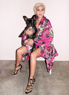 Lady Gaga and her pup Asia Kinney pose for V Magazine - News ...