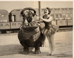 roll up circus own dental hygienist gives her clients the once over before the big show , funny vintage photo Vintage Circus Performers, Vintage Circus Photos, Vintage Carnival, Vintage Photographs, Funny Vintage Photos, National Geographic Archives, Old Circus, Circus Acts, Weird Vintage