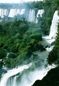 Puerto Iguazú, Argentina - I'm so sorry I missed seeing this when I was in Argentina!
